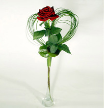 Single Rose with a heart